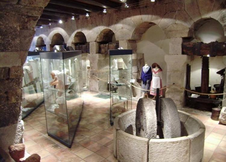 Visite Guidée Du Musée Du Vêtement Provençal à Solliès-ville à Sollies Ville