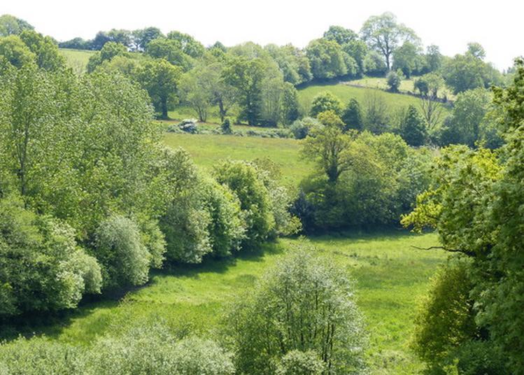 Visite Guidée Du Parc L'Évêque à Coutances