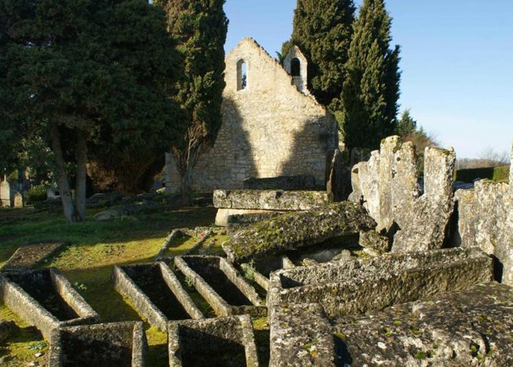 Visite Guidée Du Patrimoine à Civaux