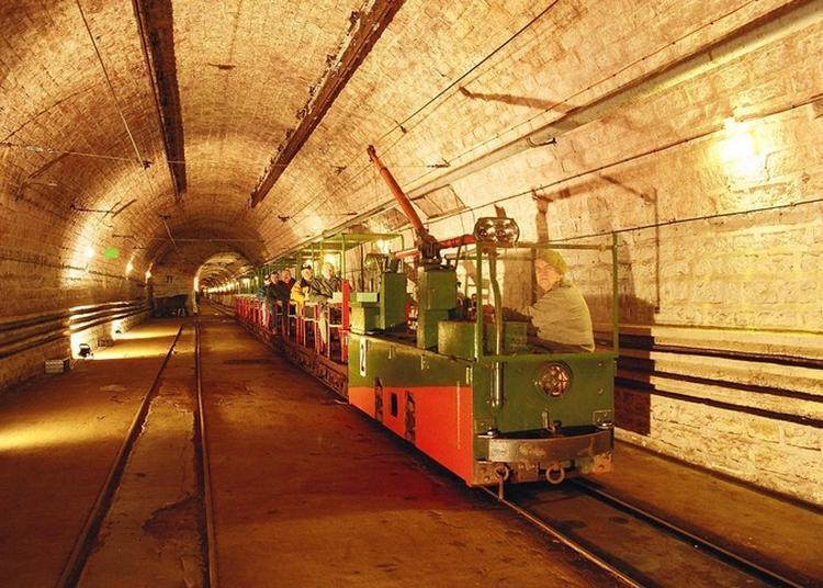 Visite Guidée Du Plus Gros Ouvrage De La Ligne Maginot Du Hackenberg Veckring En Petit Train
