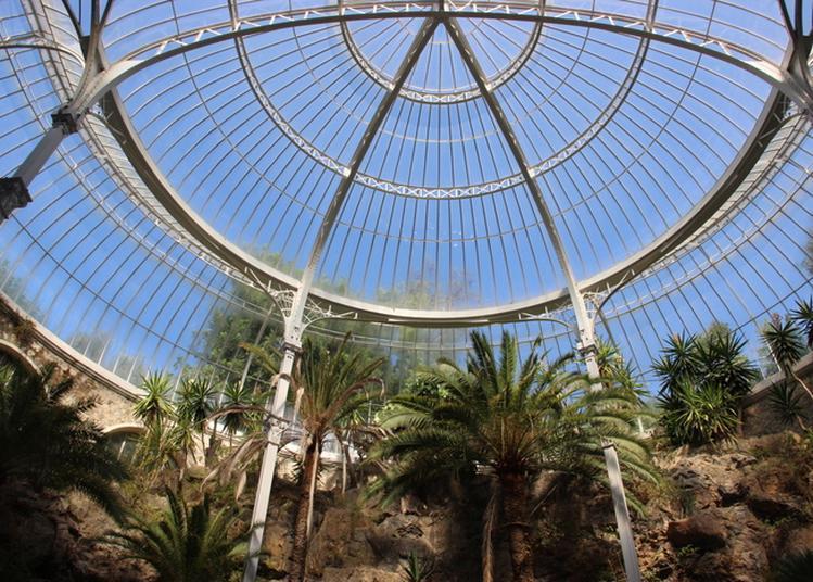 Visite Guidée Du Riviera Palace Et Du Foyer Du Poilu. Projection Des Films : Le Riviera Palace Et Le Train à Crémaillère. à Beausoleil