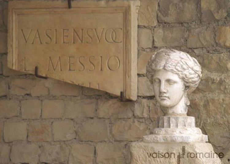 Visite Guidée Du Site Antique De Puymin à Vaison la Romaine