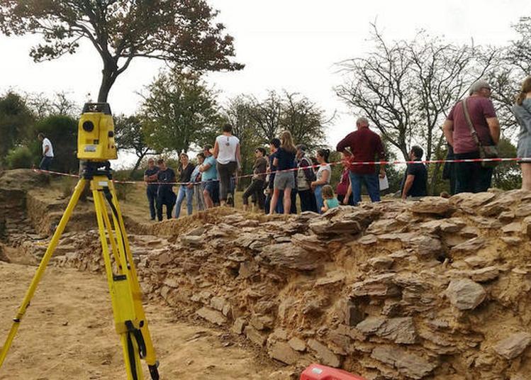 Visite Guidée Du Site Archéologique De Boutavent à Iffendic