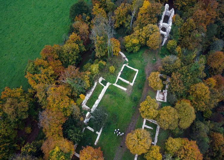 Visite Guidée Du Site De Château Ganne à La Pommeraye