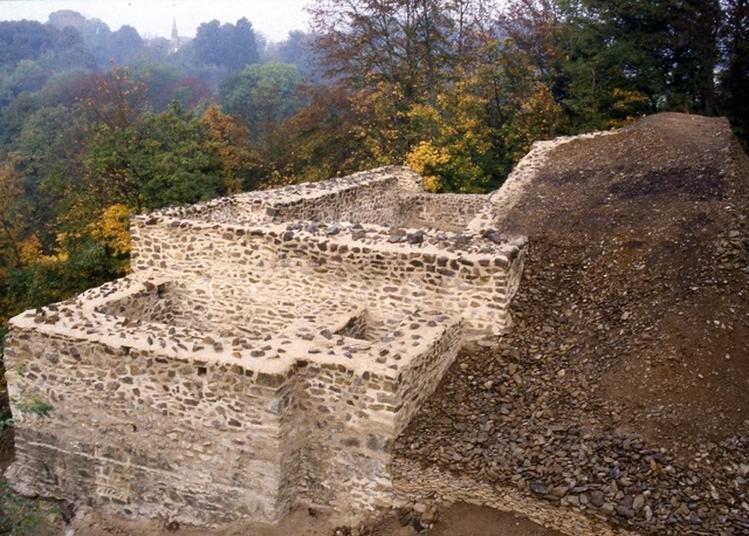 Visite Guidée Du Site Du Château Des Fées à Montcy Notre Dame