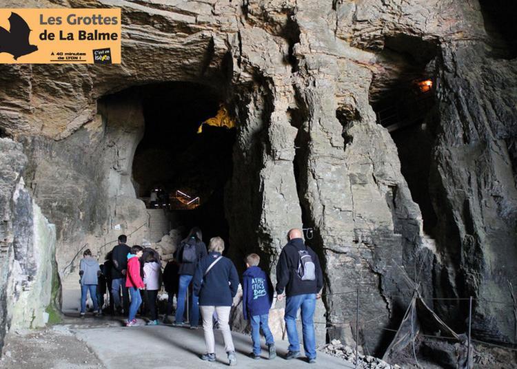 Visite Guidée Du Site Touristique à La Balme les Grottes
