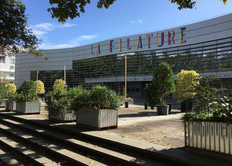 Visite Guidée Du Théâtre à Mulhouse
