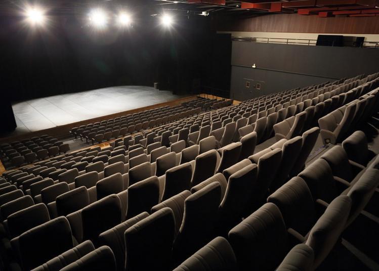 Visite Guidée Du Théâtre Antoine Watteau De Nogent-sur-marne. à Nogent sur Marne