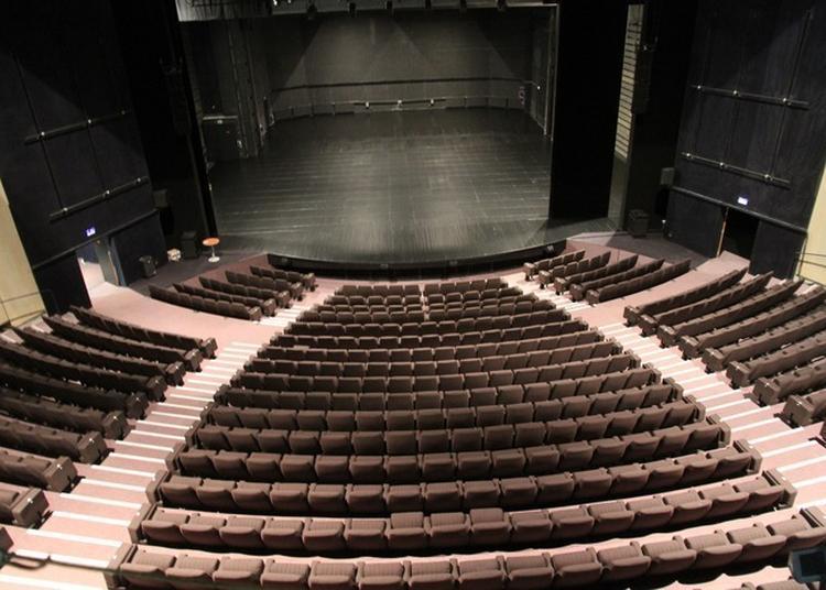 Visite Guidée Du Théâtre D'hérouville à Herouville saint Clair