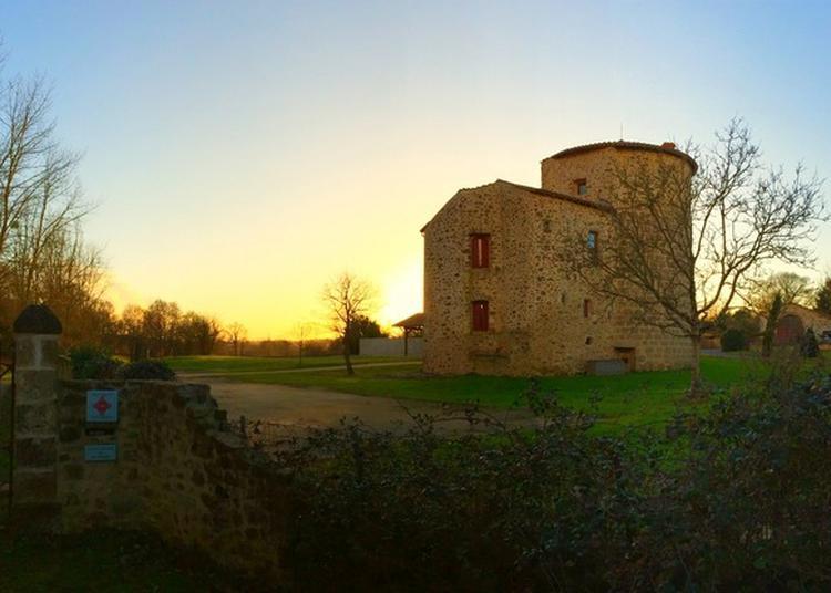 Visite Guidée Du Vieux Château De Montravers
