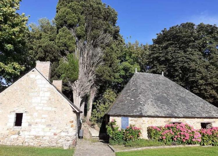 Visite Guidée Du Village de Thorigné D'anjou à Thorigne d'Anjou