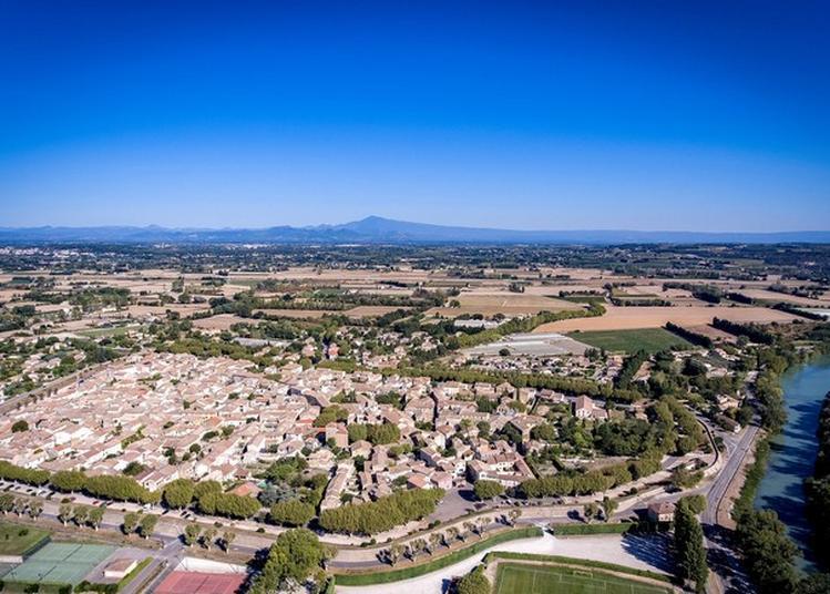 Visite Guidée Du Village Provençal De Caderousse