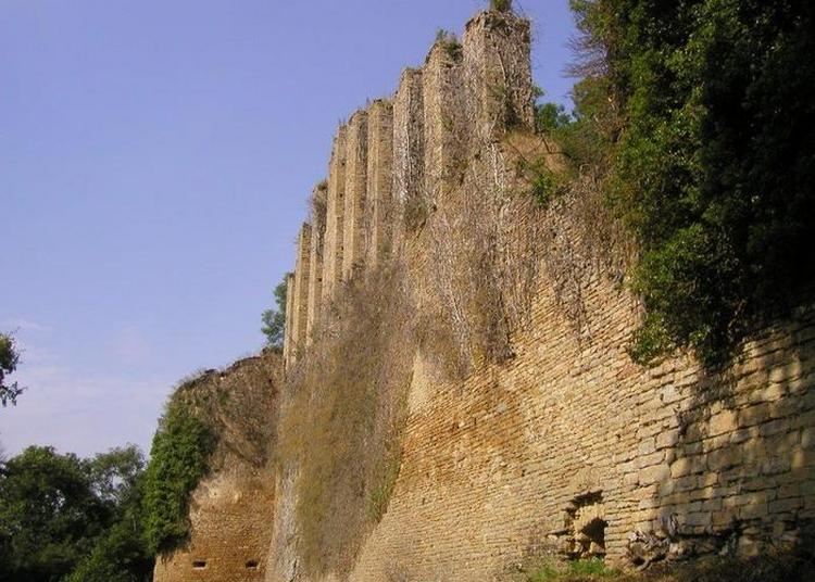 Visite Guidée Et Animations Au Château De Lourdon à Lournand