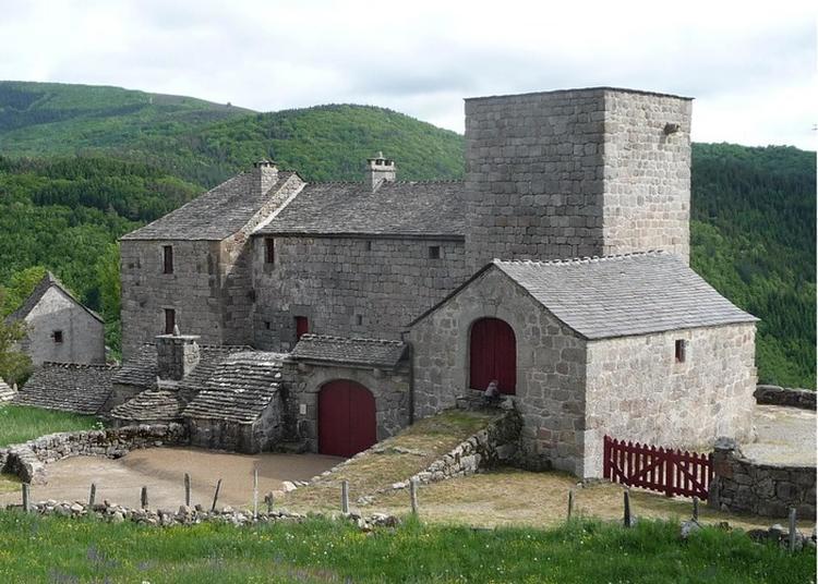 Visite Guidée Et Exposition à La Maison Natale Du Pape Urbain V à Le Pont de Montvert