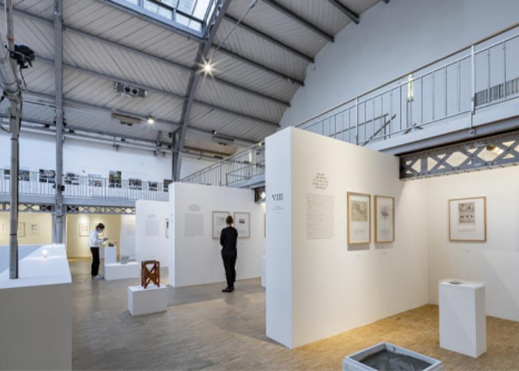 Visite Guidée - Exposition Histoire Naturelle De L'architecture à Paris 4ème