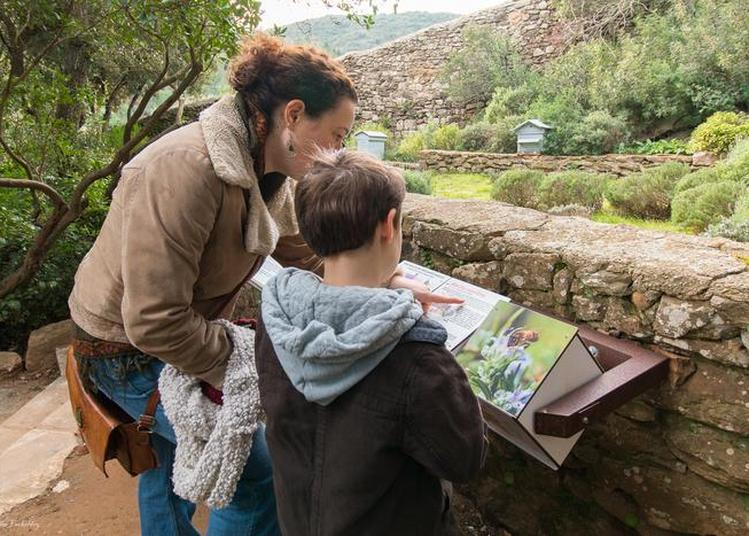 Visite Guidée Famille à Narbonne