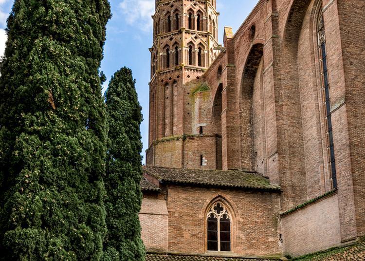 Visite Guidée Flash à Toulouse