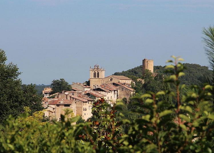 Visite Guidée Historique De La Cité D'aurignac à Aurignac