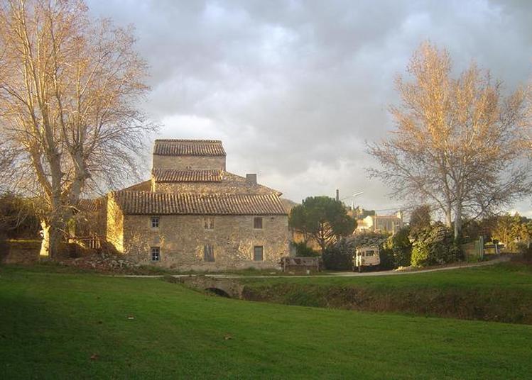 Visite Guidée Historique Et Technique à Laudun