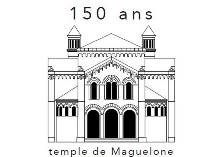 Visite Guidée Ici, On Enseigne L'humanité à Montpellier