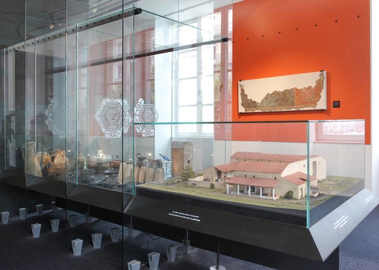 Visite Guidée L'isère En Histoire. Zoom Sur La Préhistoire Et L'époque Gallo-romaine à Grenoble