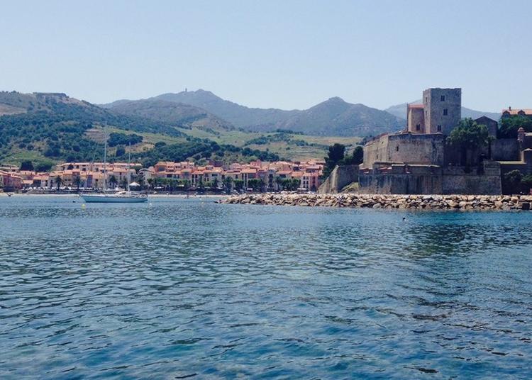 Visite Guidée : Le Chemin Du Fauvisme à Collioure