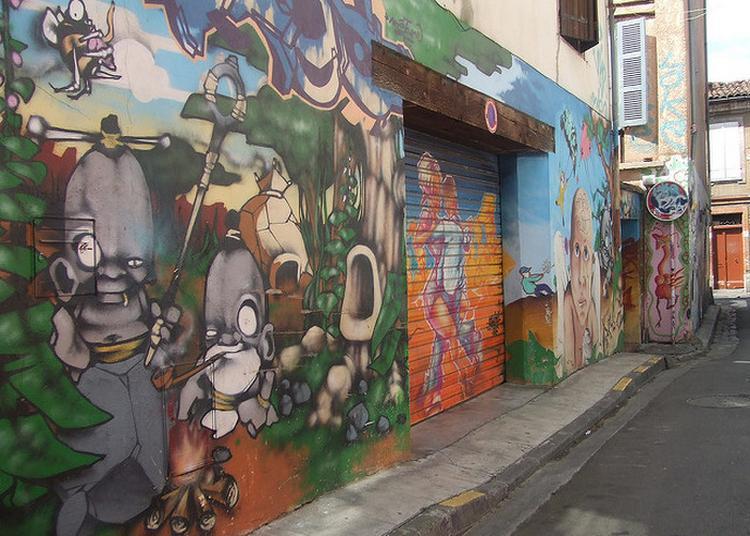 Visite Guidée Musée Des Rues : Le Street Art Toulousain à Toulouse