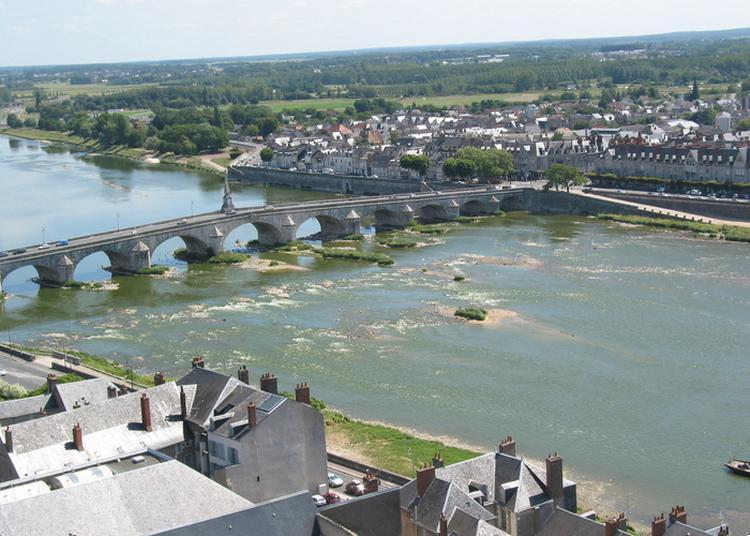 Visite Guidée - Patrimoine Ligérien à Blois