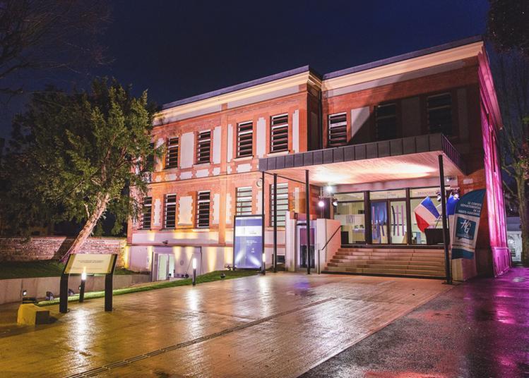 Visite Guidée Sensorielle Et Visite Libre à Toulouse