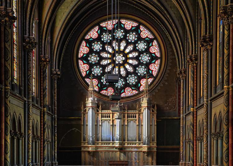 Visite Guidée Tribunes Ouvertes ! Découverte De L'orgue à La Tribune à Toulouse