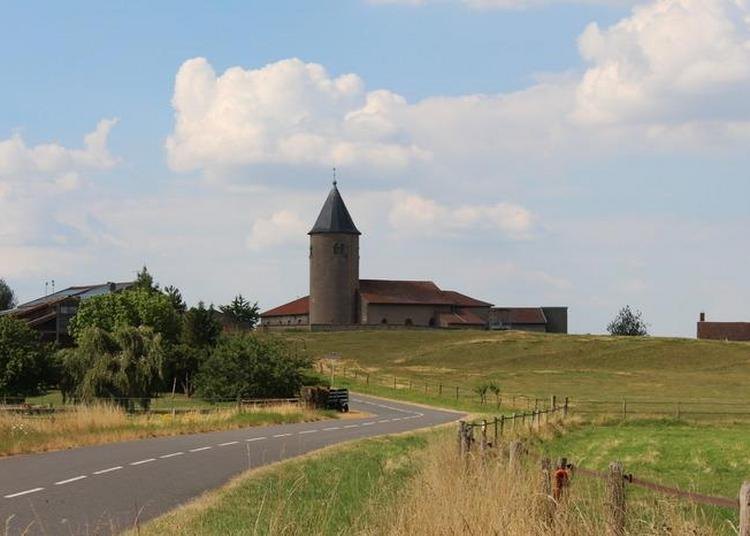 Visite Historique Et Champêtre De La Presqu'île De Tarquimpol Et Du Château D'alteville