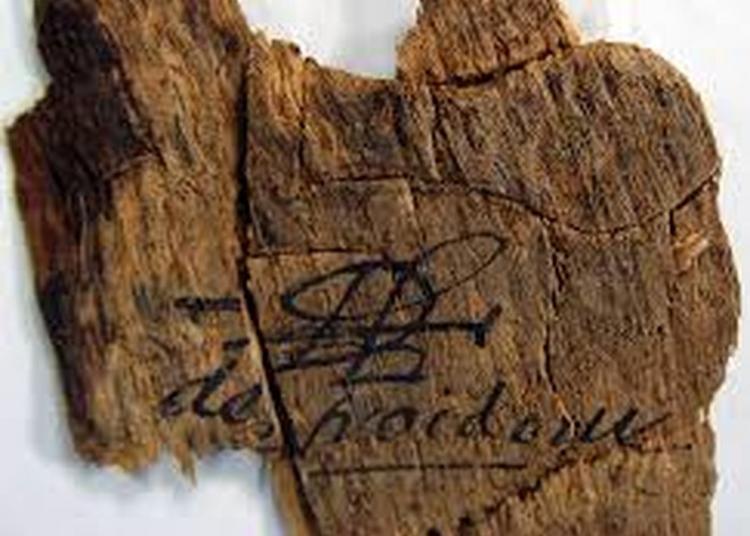 Visite Historique Et Toponymique De La Forêt De Mauboussin (cassagnabèra) à Quint Fonsegrives