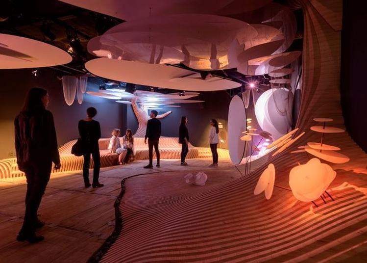 Visite Immersive Au Coeur De La Marque Yves Rocher à La Gacilly