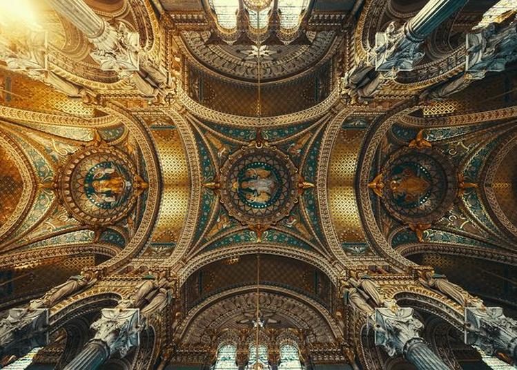 Visite Les Incontournables De La Basilique à Lyon