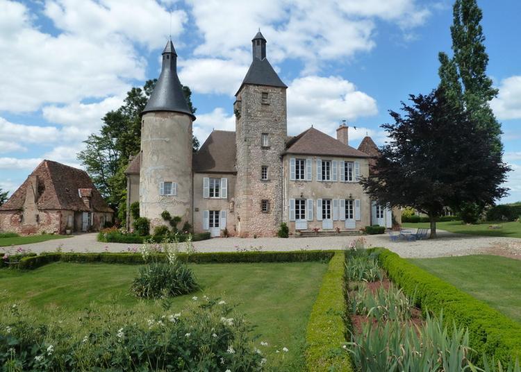Visite Libre à Saint Menoux