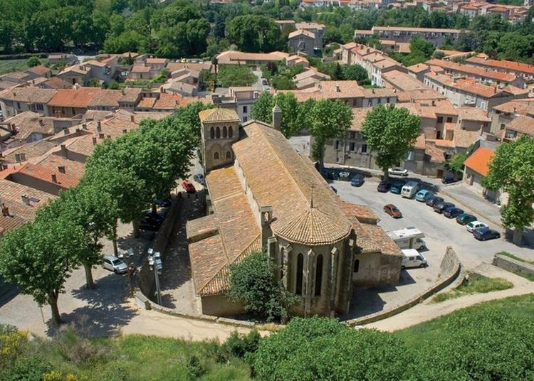 Visite Libre à Carcassonne