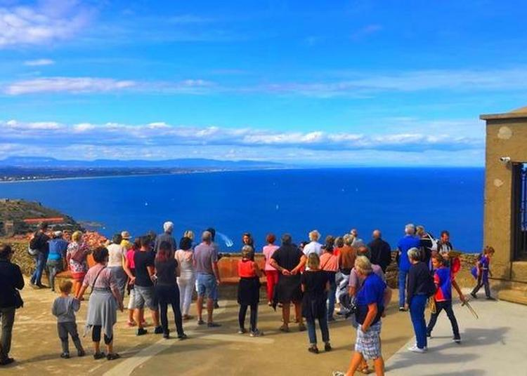 Visite Libre à Collioure