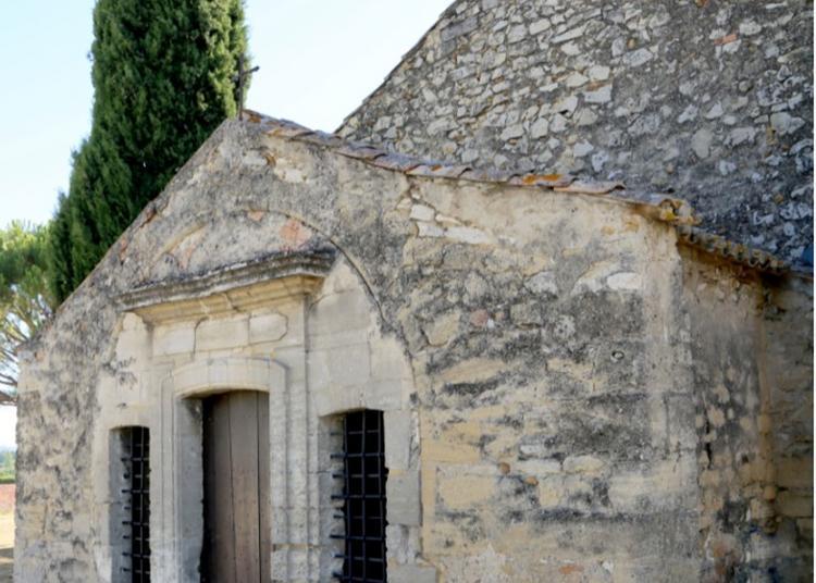 Visite Libre à Roquemaure