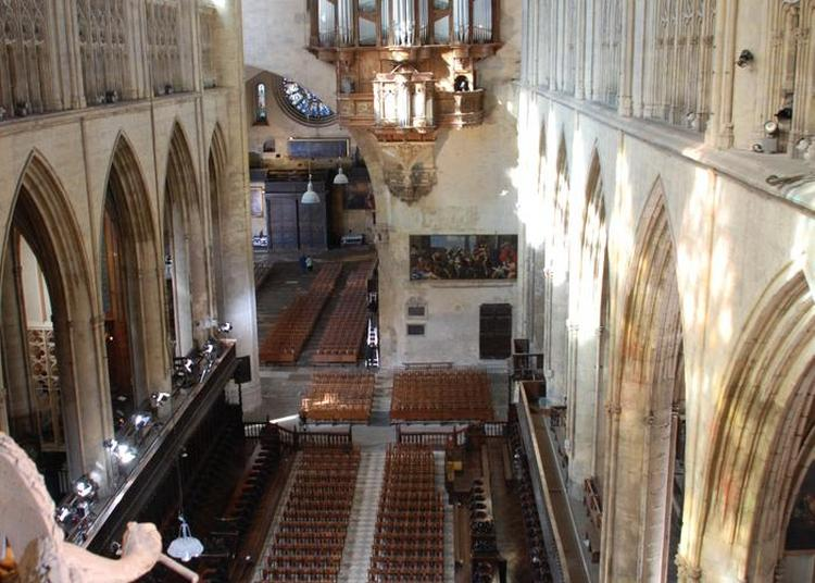 Visite Libre cathédrale Saint Etienne à Toulouse