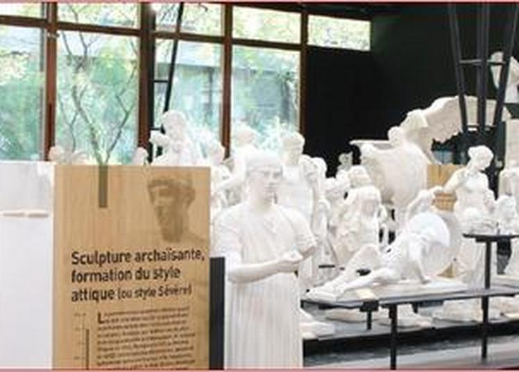 Visite Libre Musée des moulages à Montpellier