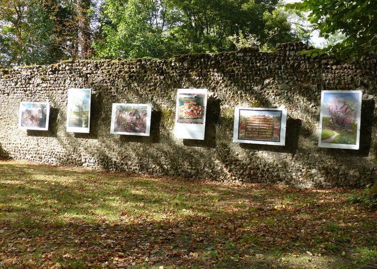 Visite Libre à Chateau Renault