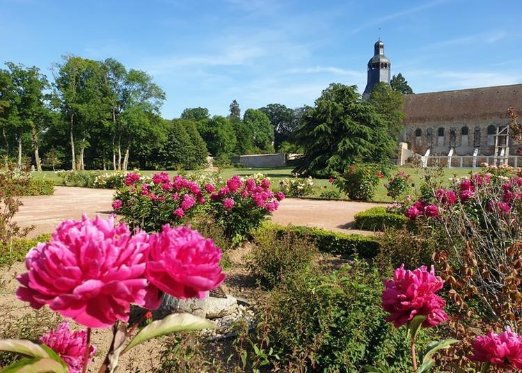 Visite Libre : Abbaye De Thiron-Gardais à Thiron Gardais