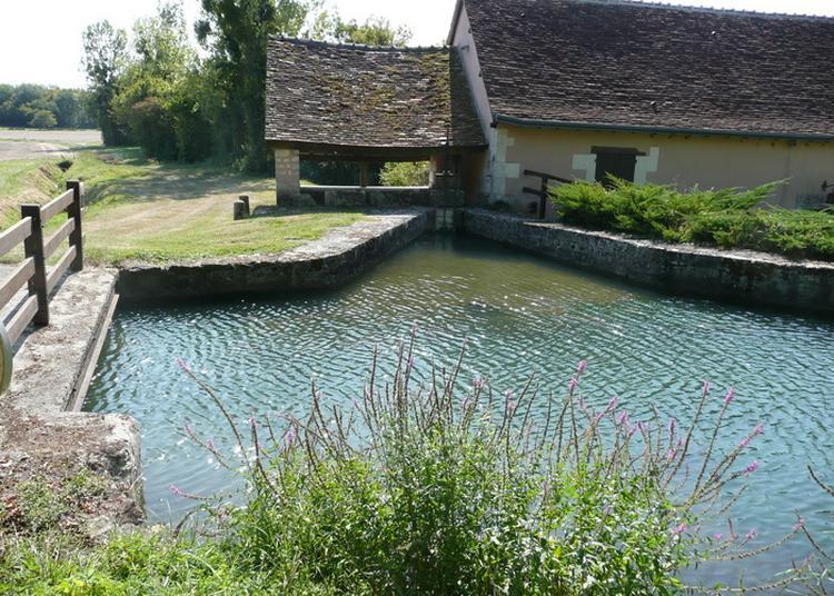 Visite Libre du Moulin Neuf à Villegouin