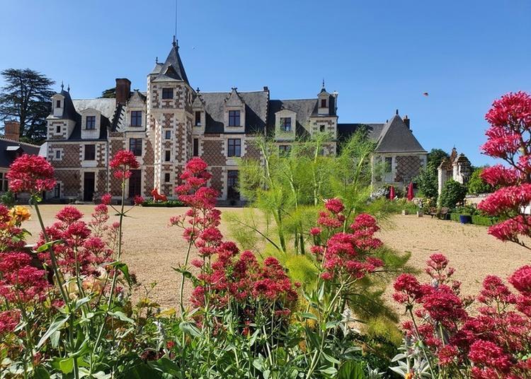 Visite Libre à Vernou sur Brenne