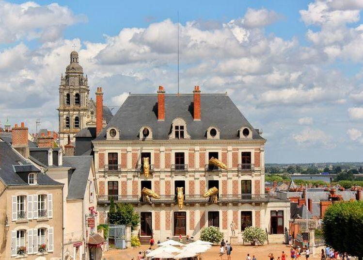 Visite Libre à Blois