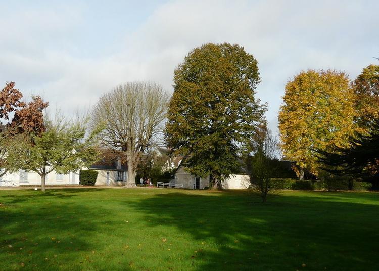 Visite Libre à La Croix en Touraine