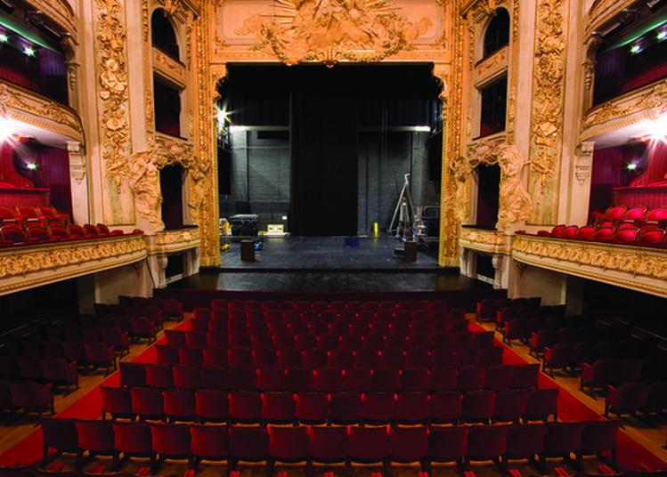 Visite Libre Avec Concerts Impromptus à Lille