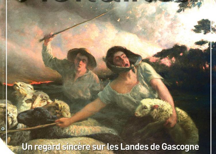 Visite Libre Codée De L'exposition Etienne Mondineu : Un Regard Sincère Sur Les Landes De Gascogne Autour De 1900 à Dax