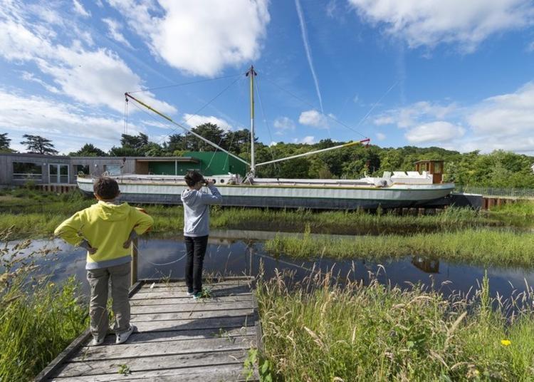 Visite Libre De Cap Loire à Montjean sur Loire