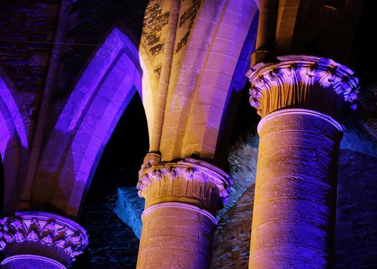 Visite Libre De L'abbaye Et Des Expositions à Hambye